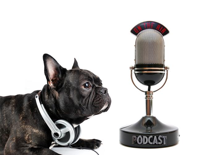 Podcasting virality