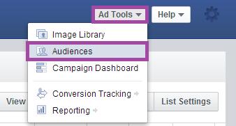 Facebook Power Editor Custom Audience